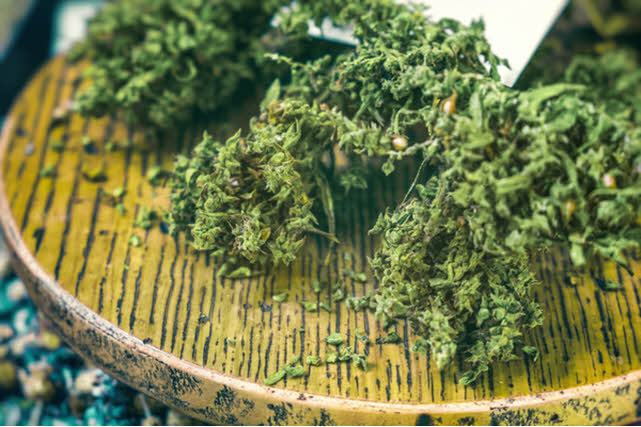 Marijuana Sativa Plant Containing Delta 8 THC
